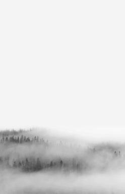 front_fog